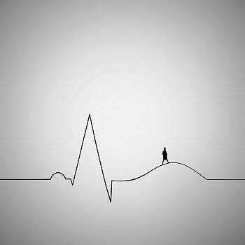 Krivka života