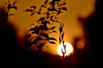 Sluneční schovávaná