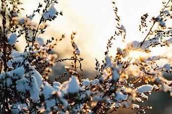 Sněhový západ slunce