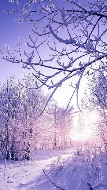 Zima je krásná :3