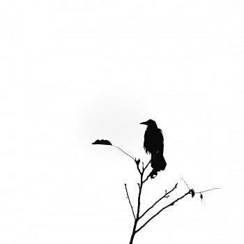 Samotář