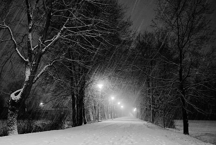 Zasněžená procházka