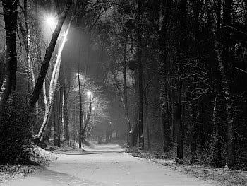 Pod sněhovou přikrývkou