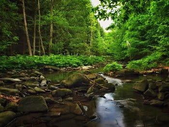 Bublající potok