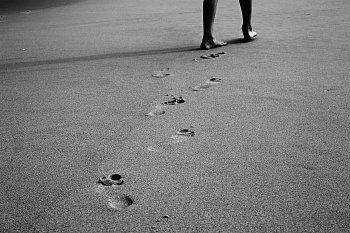 Cesta životem