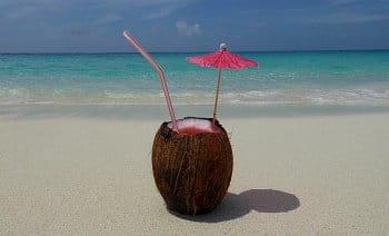Coco in Bahamas