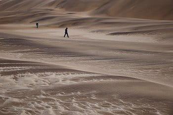 V poušti Namib ...