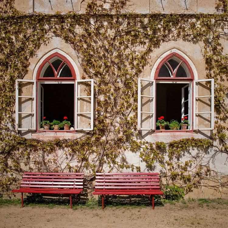 Okna a lavičky