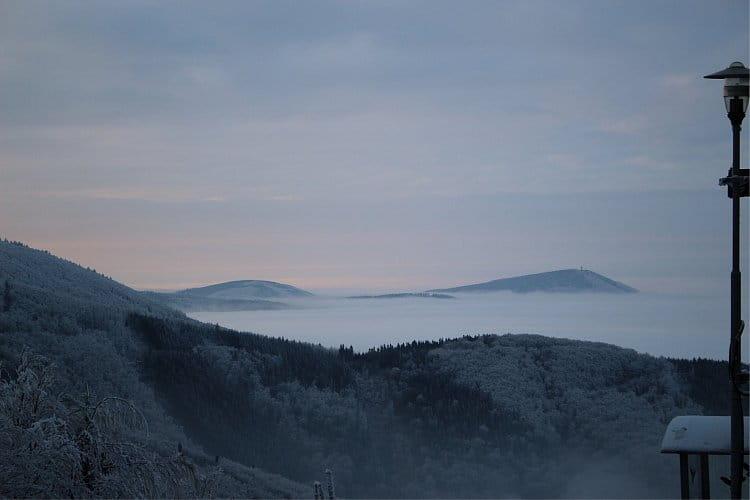 Sníh Mlha a Lesy