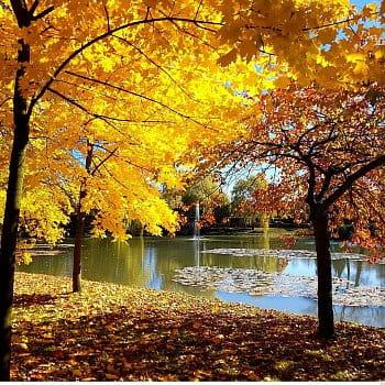 Podzim v Lánech