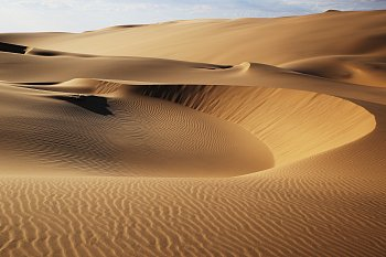 V poušti Namib (2)