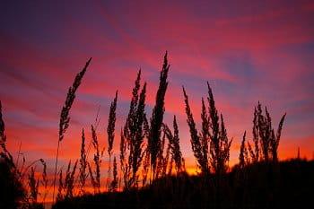 Západ slunce při brzkém podzimu