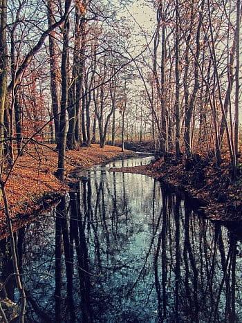 Drnový potok