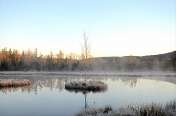 Probouzení přírody
