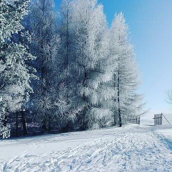 Bílá Modř