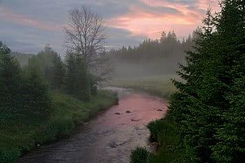 Ráno u potoka