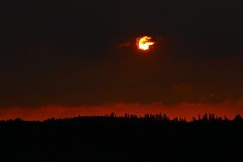 východ slunce nad lesem