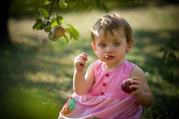 Jablečná svačinka