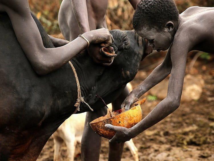 Děti Afriky (3)