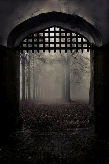 Brána otevřena
