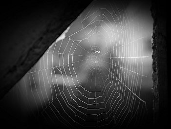 ...a zbyly mi jen střípky snů z pavučiny...II.