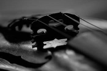 Černobílé tóny