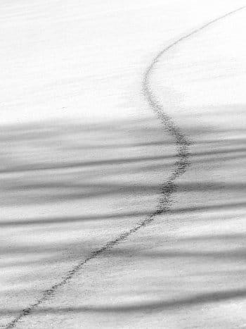 Sníh-Světlo-Stín