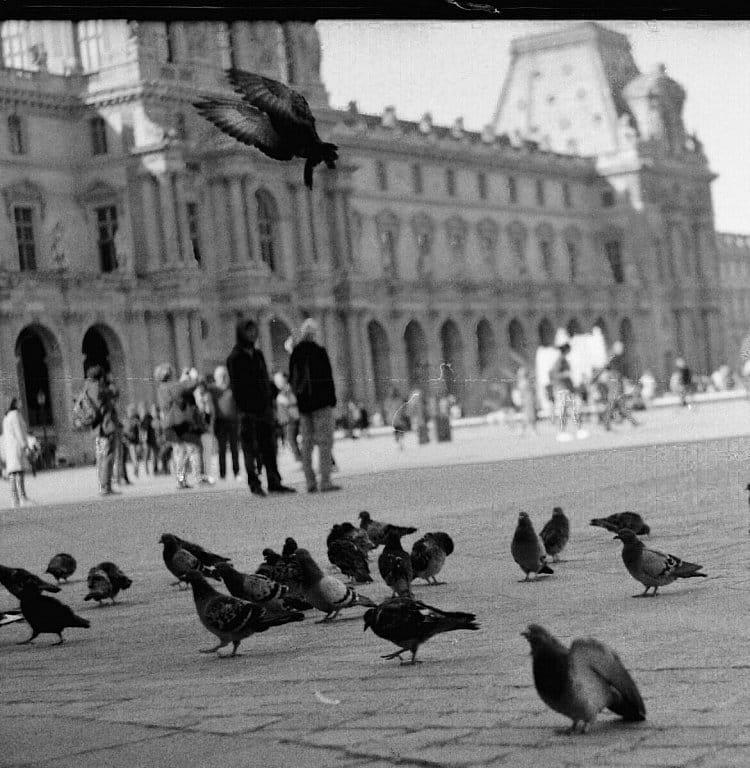 snění v paříži.