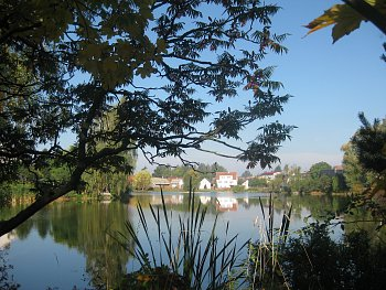 Rybník Pátek Záboří