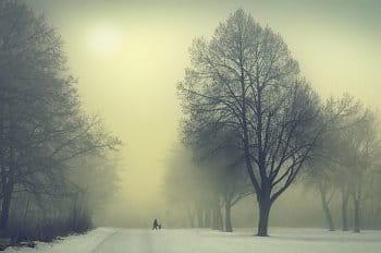 Zimní mlha ve městě