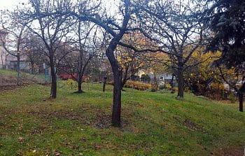 Podzim! se hlásí