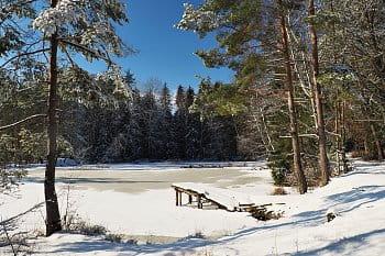 Okouní rybník