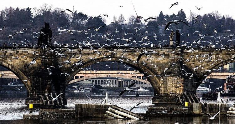 Praha mosty