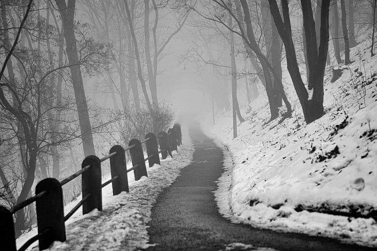 Cesta v krajině