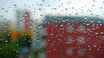 Wet Town WINDOW