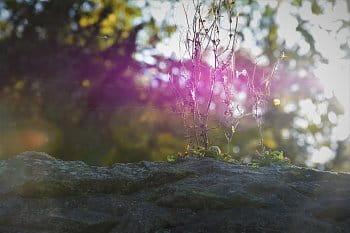 Kouzlo světla