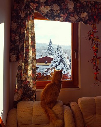 Zima venku