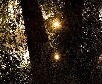 Dvě slunce
