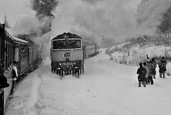 zimní radosti