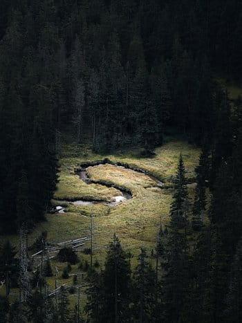 Krkonošská divočina