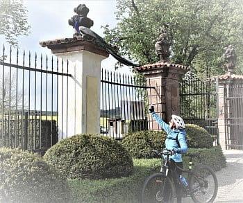 páv a cyklistka