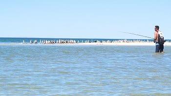 Australské rybaření