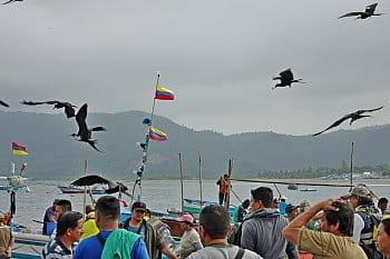 Fregaty, Puerto Lopez, Ekvádor