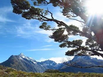 Trackování Novým Zélandem