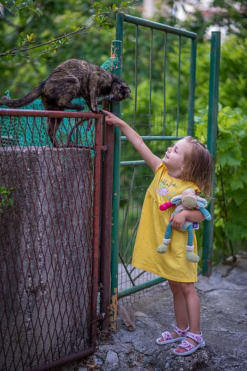 Setkání s kočičkou