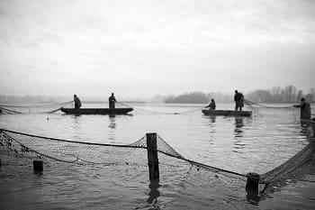 Česká tradice - Výlov rybníku 2019