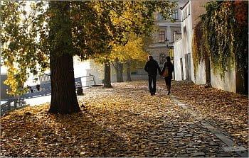 Podzimní procházka ve dvou