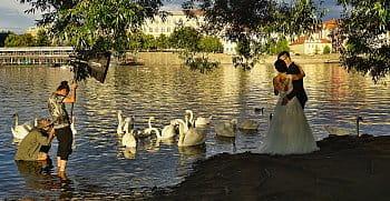 Jak se fotí japonská svatba