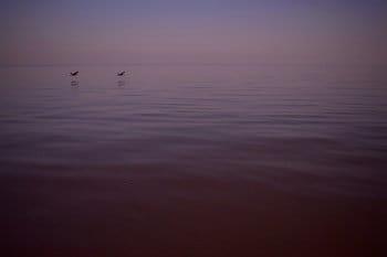 Na jezeře Tana