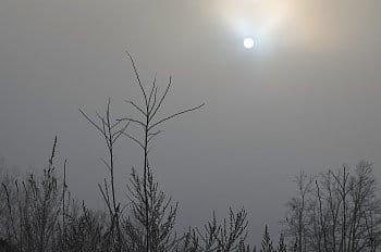 Za mlhou hustou